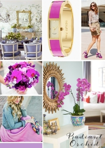 radiant orchid 2014 color of the year_ michaela noelle